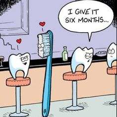 Dental humor! Your supposed to change your tooth brush every six months! Lol hahaha get it? Get it?