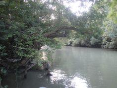 Kamchia river .