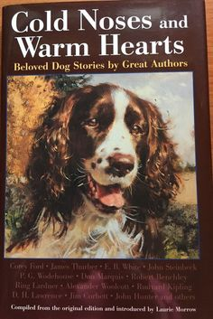 Cold Noses and Warm Hearts: Beloved Dog Stories by Great Authors 1997 HC DJ