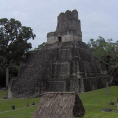 Guatemala - Department of El Peten - Tikal National Park - ©B. Doucin/L.Lalait