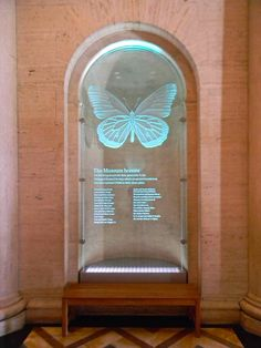 Glass Donor Plaque 51 x 118 x 1/2 thick clear glass, sandblast etched and 3D sculpture carved by Sans Soucie in May 2012.