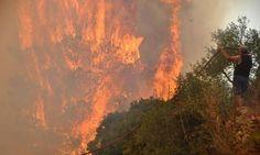 Греция: остров Закинфос снова охвачен огнем http://feedproxy.google.com/~r/russianathens/~3/pqbUM4bYcV0/22704-gretsiya-ostrov-zakinfos-snova-okhvachen-ognem.html  Жемчужина Ионического моря, Остров Закинфос продолжает гореть. Новая серия пожаров, началась в прошедшее воскресенье, по сообщению службы пожарной охраны новые очаги возгорания занимают территорию в несколько десятков гектаров.Огонь, местами достигавший высоты в 20 метров, разрушал на своем пути дома, хозяйственные постройки…