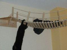 Vorstellung Catwalk mit Hängebrücke - Do it yourself - Katzenforum- MietzMietz das Forum über Katz