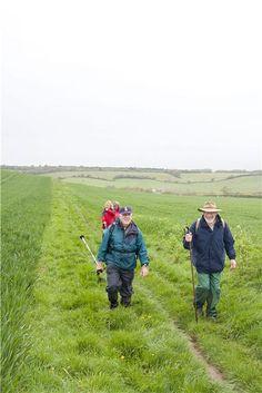 Walks And Walking - The Isle of Wight Walking Festival 2013 Walking Routes, Isle Of Wight, Walks, Hiking Trails, Walking