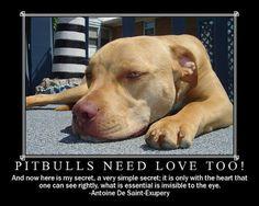 Pitbulls need love too!      Do you guys agree?