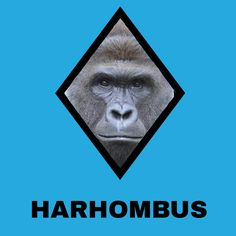 Shapes out for Harambe #funny #funnyPicture #FunnyText #funnyVideo #funnyPost…