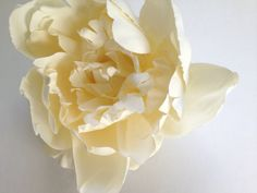 Part of our new HATCHLING Collection for Kids:  FLORY Girls Oversized Ivory Silk Peony Hair Clip by PompAndPlumage, $18.00