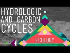 Crash Course Video.  Hank introduces us to biogeochemical cycles by describing his two favorites: carbon and water. The hydrologic cycle describes how water moves on, above, and below the surface of the Earth, driven by energy supplied by the sun and wind. The carbon cycle does the same... for carbon!