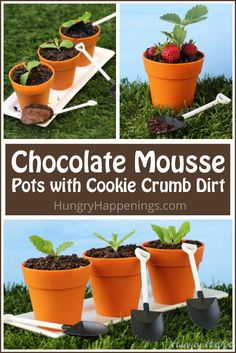 Chocolate Mousse Flower Pots with Chocolate Cookie Crumb Dirt and Mint Leaves or Strawberries are a fun dessert for a garden party, Mother's Day, or any springtime event. Chocolate Pudding, Chocolate Pots, Homemade Chocolate, Chocolate Desserts, Chocolate Brownies, Mint Chocolate, Pudding Desserts, Party Desserts, Appetizers For Party