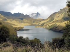 Experience the breathtaking beauty of a highland moorish plain with 270 lakes and wild llamas! - Cajas National Park, Ecuador    www.elnomad.com  Twitter/elnomad - #onlyinECUADOR