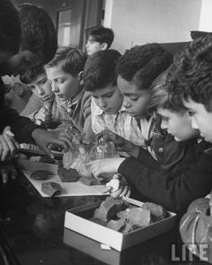 Nina Leen - Children studying rocks at an experimental elementary school for gifted children at Hunter College. New York, 1948. S)