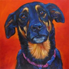 Marna Schindler's pet portraits.  Gorgeous.