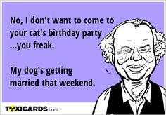 No, I don't want to come to your cat's birthday party .you freak. My dog's getting married that weekend. Cat Birthday, E Cards, Get Over It, Getting Married, Cats, Memes, Gatos, Electronic Cards, Meme