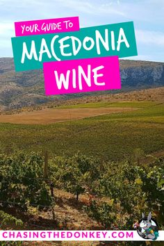 There are also some amazing wine regions in different parts of the world that don't get nearly enough attention as they should. One of them is the small Balkan country of Macedonia, here is all you need to know about Macedonian wine. Landscape Photography Tips, Night Photography, Landscape Photos, Scenic Photography, Best Vacation Spots, Best Vacations, Time Travel, Travel Tips, The Donkey