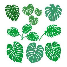 Banana Leaves SVG Cuttable Designs Plant Leaves, Monstera Leaves, Apex Embroidery, Cutting Tables, Leaf Art, Diy Arts And Crafts, Tropical Leaves, Cricut Design, Silhouette Cameo