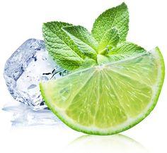 Water en munt gaan heel goed samen. Zet eens waterkan op tafel met een citroen of limoen in stukjes en grote tak munt, voor een subtiele verfrissende smaak.