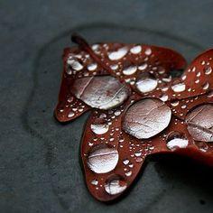 color inspiration: autumn gray leaf rust