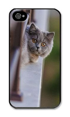 iPhone 4/4S Case DAYIMM Cat Fence Ook Black PC Hard Case for Apple iPhone 4/4S DAYIMM? http://www.amazon.com/dp/B013D908UG/ref=cm_sw_r_pi_dp_vrggwb001Z131