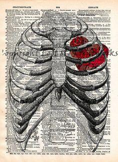 Steampunk clockwork heart, vintage anatomy ribcage, dictionary page book art print