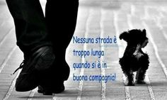 No road is too long when it is in good company! Cute Cats And Dogs, I Love Dogs, Animals And Pets, My Best Friend, Best Friends, Italian Quotes, Good Company, Dog Friends, Make Me Smile