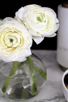 ranunculas-cute for reception or cocktail tables Beautiful Flowers Garden, Beautiful Flower Arrangements, My Flower, Pretty Flowers, Fresh Flowers, White Flowers, Floral Arrangements, Floral Flowers, Vases