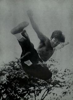 The Big Boss, Martial Artist, Bruce Lee, Great Artists, Dragon, Le Mans, Celebrities, Movies, Actors