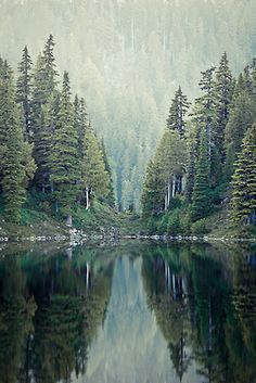 View Across Crescent Lake:: Olympic National Forest.. .