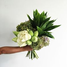 * A seasonal mixed bunch of flowers. * Delivery will occur the same day or week your order is placed. * For same day delivery orders must be placed before that day. * Please email if you have any special requests or fall outside the delivery zone. Strange Flowers, Rare Flowers, Bunch Of Flowers, Big Flowers, Beautiful Flowers, Wedding Flowers, Wedding Bouquet, Bridal Bouquets, Floral Wedding