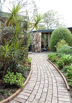 Brick Walkway - Mid Century Use of Traditional Material