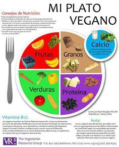 Mi Plato Vegano