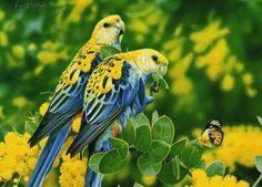 Gif Pássaro