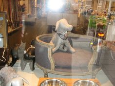 Dog mannequins in a retail pet store in Amsterdam