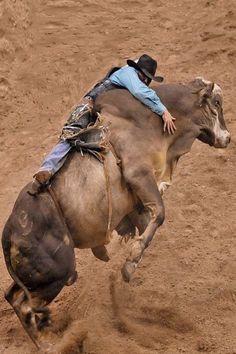 Rodeo Cowboy ❦ A whole lot of bull :) Hang on…. Rodeo Cowboys, Real Cowboys, Cowboy Horse, Cowboy And Cowgirl, Cowboy Pics, Vaquera Sexy, Bucking Bulls, Rodeo Life, Bull Riders
