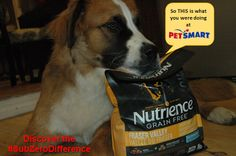 Pet food with No Bad Anything: Discover the #SubZeroDifference We used #Nutrience #Subzero for training! Keira and I took a trip to PetSmart to taste test this new food! #PetSmart #Sponsored  http://www.pawsforreaction.com/nutrience-subzero-high-quality-pet-food.html
