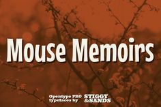 Mouse Memoirs Pro by Stiggy & Sands on Creative Market
