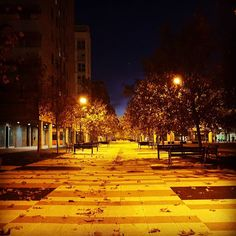 Veo claro el camino que he de seguir. #diariodeuninstagramer