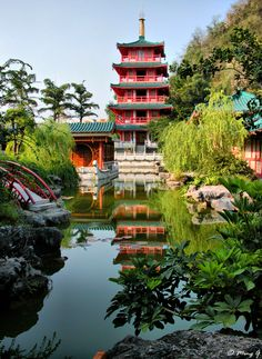 Best Chinese Garden by Ming G via px