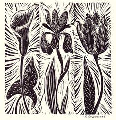Botanical Printmaking: by P Greenwood