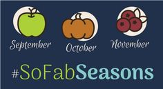 Fall is apple time, and I've partnered with Social Fabric's blogging community to bring you recipes, crafts, activities, and even a beauty recipe for September's theme--Apples! If you love apples, you can find everything here for fritters, cakes, snacks, desserts, dinners, drinks, games, and DIYs.