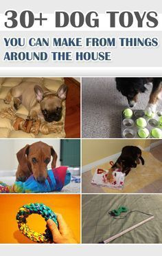 33 Dog Toys You Can Make From Things Around the House - Dog treats - Hunde Diy Dog Toys, Pet Toys, Homemade Dog Toys, I Love Dogs, Puppy Love, Diy Pour Chien, Dog Games, Animal Projects, Diy Stuffed Animals