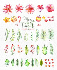This set of 46 high quality hand painted watercolor floral Elements(flowers, leaves, berry, bows, fir-tree, stars, Christmas decorations). Perfect