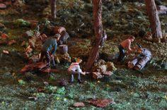taglio nel bosco