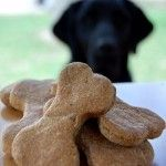Pamper Your Pet with Homemade Treats
