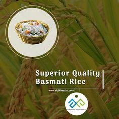 #AlobhaExim exports high-quality #BasmatiRice in bulk quantities across the globe. We take special care to conserve the inherent quality of these rice and their nutrition values. http://alobhaexim.com/basmati-rice