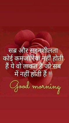 Good Morning In Hindi, Good Morning Msg, Good Morning Flowers, Good Morning Messages, Good Morning Greetings, Good Morning Images, Shyari Quotes, People Quotes, Quotable Quotes