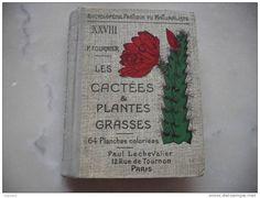 Encyclopedie Pratique du Naturaliste  livre 28   Les Cactees et Plantes Grasses P Fournier  1935