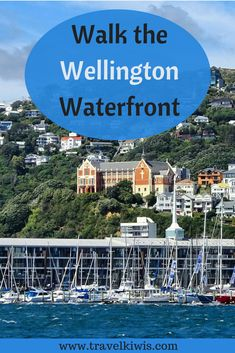 Wellington New Zealand is the coolest little capital in the world. Looking for new travel ideas? Come and enjoy the best coffee culture, as you discover these 5 fabulous sites of the Wellington waterfront. Montego Bay Resorts, Capital Of New Zealand, Visit Jamaica, Wellington New Zealand, New Zealand Travel Guide, Slow Travel, Scuba Diving, Padi Diving, Worldwide Travel