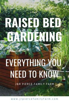 Learn more about the materials, skills, and knowledge you need to start a raised bed garden.