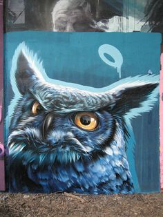 Owl graffiti,
