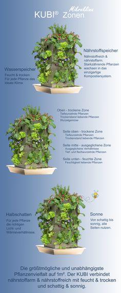 Der KUBI - Die größtmögliche und unabhängigste Pflanzenvielfalt auf 1m² in 3 Schritten erklärt. Der KUBI ist ein perfekt abgestimmtes Anbausystem aus Erdvolumen, Kompostierung und Bewässerung. Über 10 Jahre Erfahrung und als Leuchtturmprojekt von der Deutschen UNESCO-Kommission ausgezeichnet! #KUBI #Mikroklima #Kompostierung #Bewässerung #Gemüseanbau #Kräuteranbau #Balkon #Terrasse #Anbau #Ideen #Garten #Vertikal